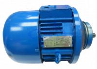 Двигатель подъема для CD1 и MD1, ZD1 21-4 (0,8 кВт), г/п 0,5 тн